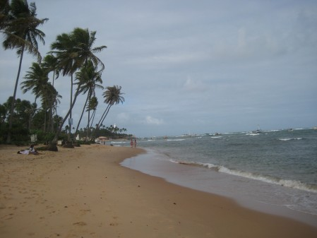 Praia do Forte, a little village and sea turtle conservation project area an hour northeast of Salvador